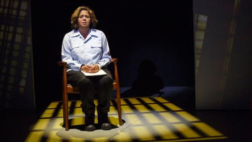 Anna_Deavere_Smith_Joan_Marcus_NOTES