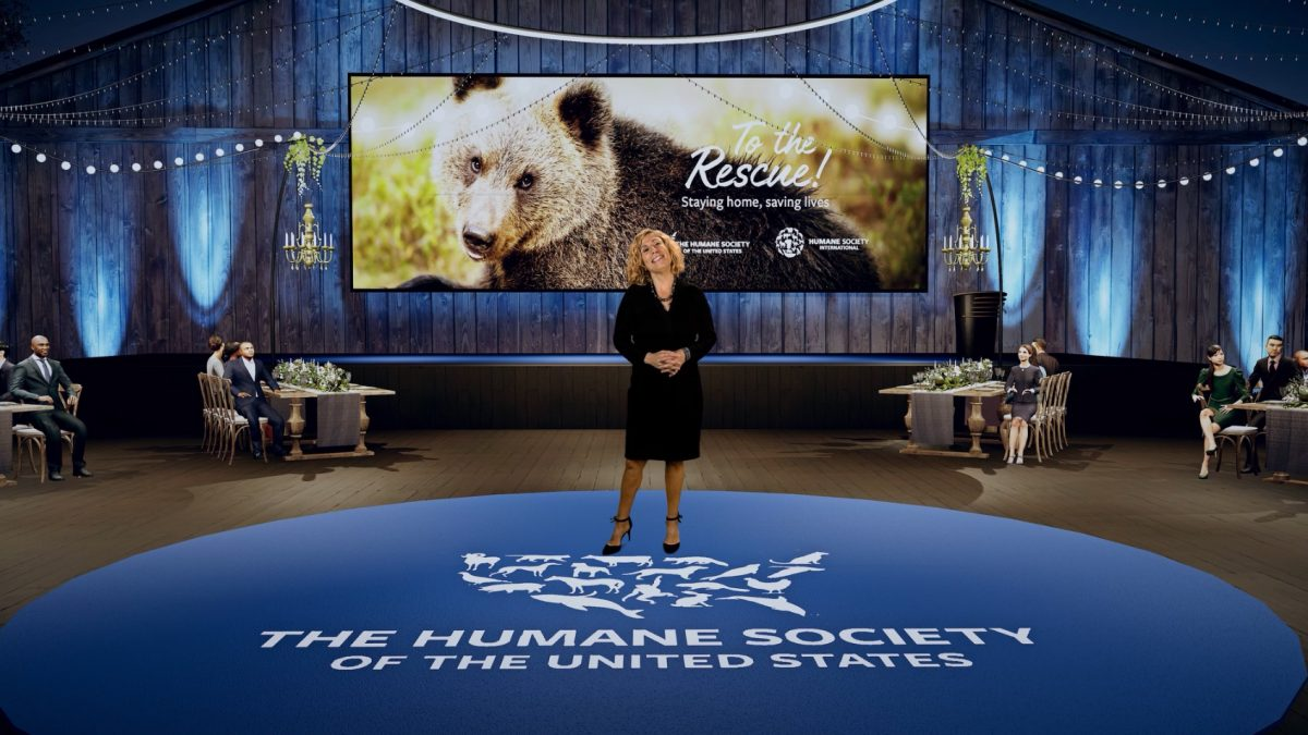 """The Humane Society """"To the Rescue!"""" Gala"""